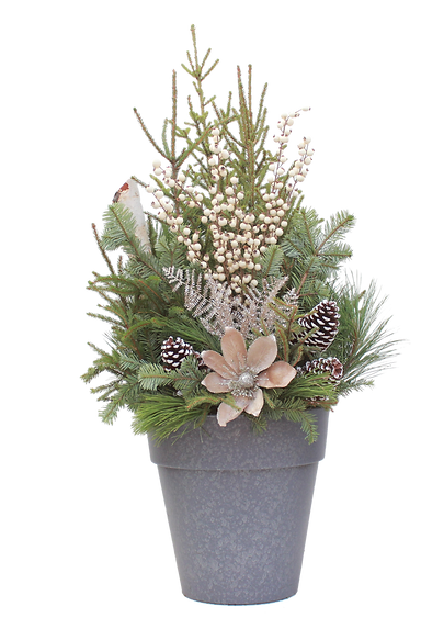 Spruce Tip Container with magnolia blossom
