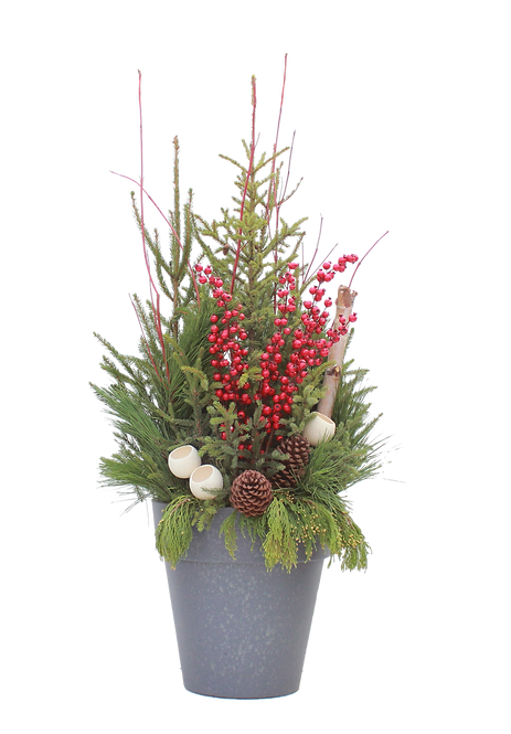 Spruce Tip Container with red berries