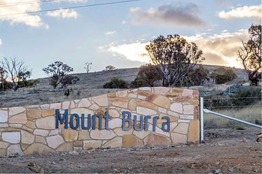 Mount Burra Gallery