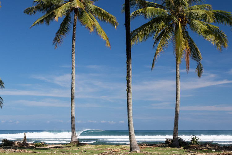 south-sumatra-surf-holiday.jpg