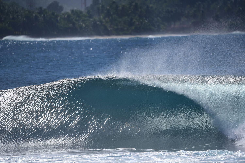 jennys-right-south-sumatra.jpg
