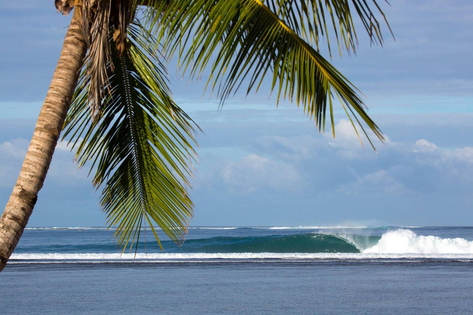 jimmy-right-surf-camp-sumatra.jpg
