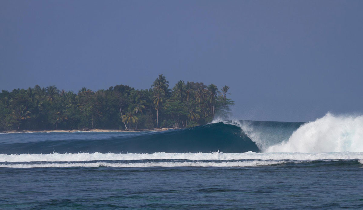 zz-jimmies-right-krui-south-sumatra.jpg