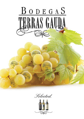 Bodegas wines