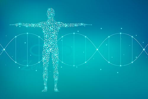 24股DNA活化與解讀
