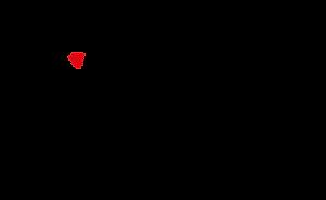 Logo Cattycoat 4 zwart.png