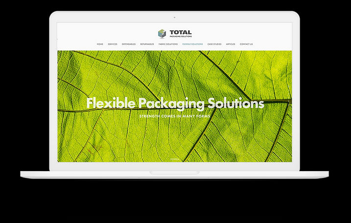 tps-website-on-macbook-2.jpg
