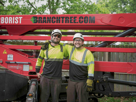 BranchTree2019-76_Web.jpg