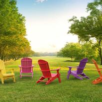 Color Adirondacks.jpg