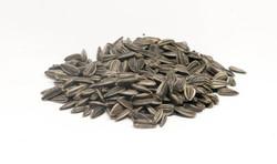 Sunflower seeds LG