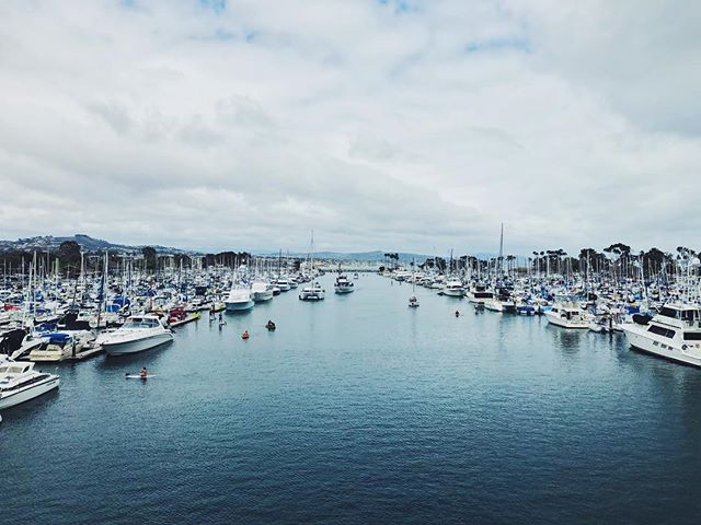 blue lil harbor