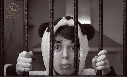 Panda in Prison