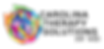 CTS-logo-no-background.png