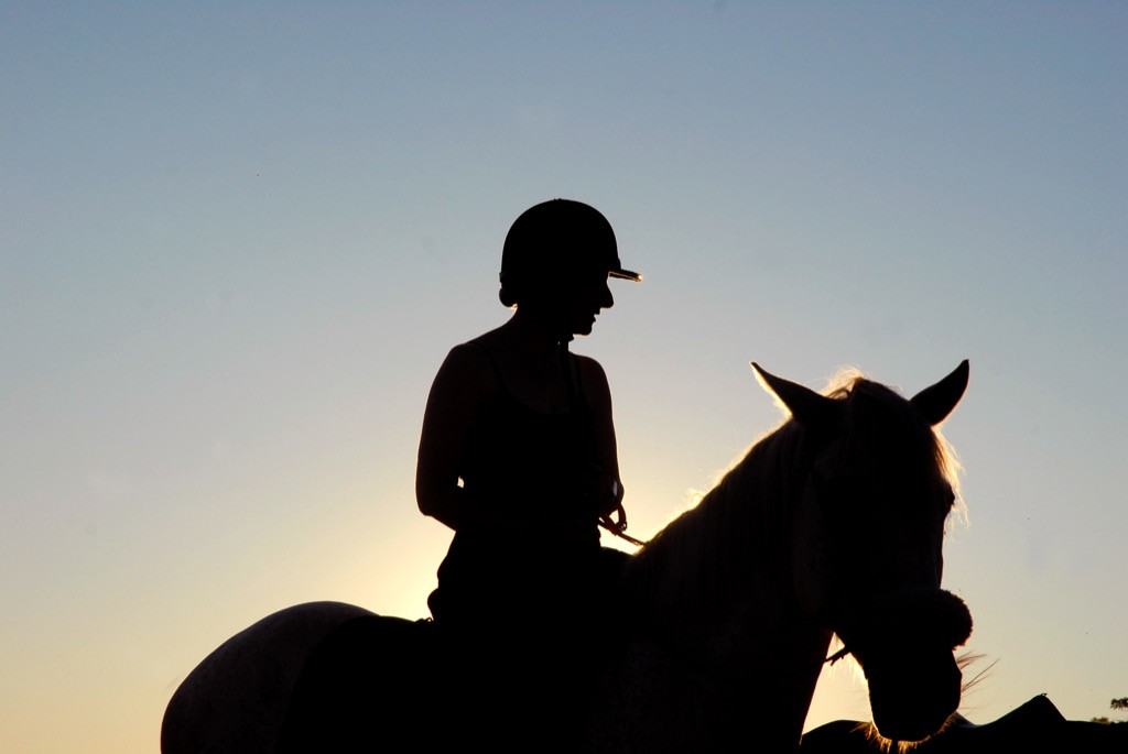 Ferme-Equestre-PechMerle----ATE-Lot---M.