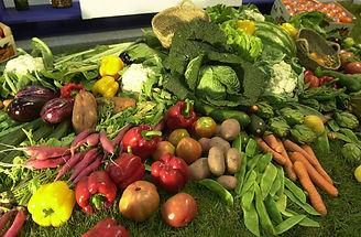 Consumo y salud: los p`roductos ecológicos benefian a toda la sociedad