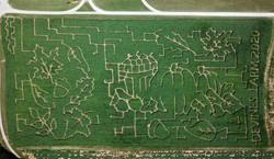 2020 Devine's Corn Maze R0