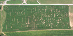 2012 Devine's Corn Maze.jpg