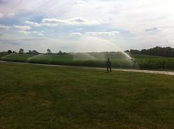 irrigate.jpg