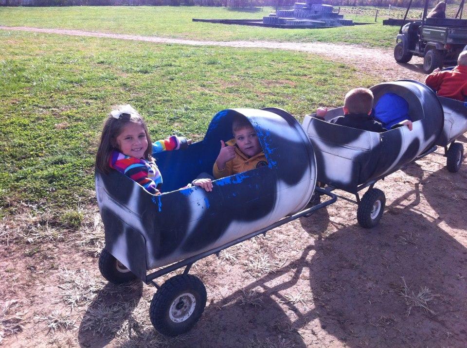 cow train.jpg