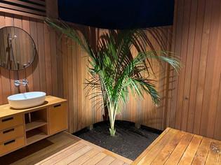 Bathroom / Rakino. MBD Builders Ltd.