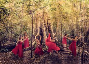 na floresta.jpg