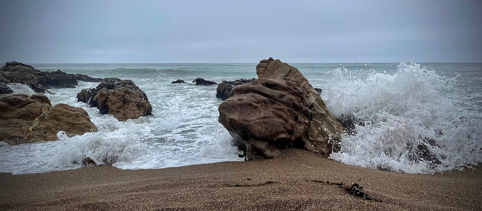 Walk With Me - Cambria, June 2021