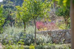 Bleverde Crete Luxury villas-4