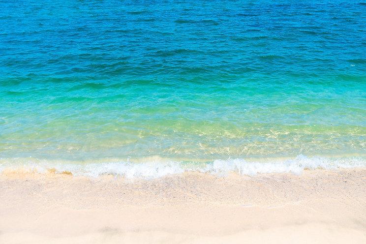 Canva - A Sea at Beach.jpg