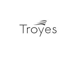 Logo Troyes NB