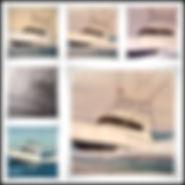 #marineaccentsusa.com/boatportraitpillows/TIJERITA