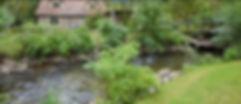 fullsizeoutput_5e2_edited.jpg