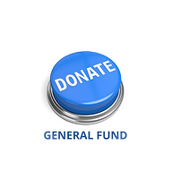 GENERAL FUND.png