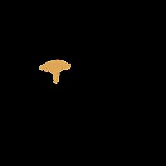 AIM Logo Alt Logo