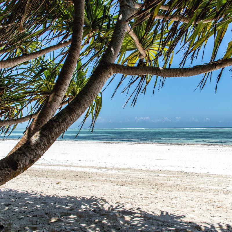 7 Days in Zanzibar