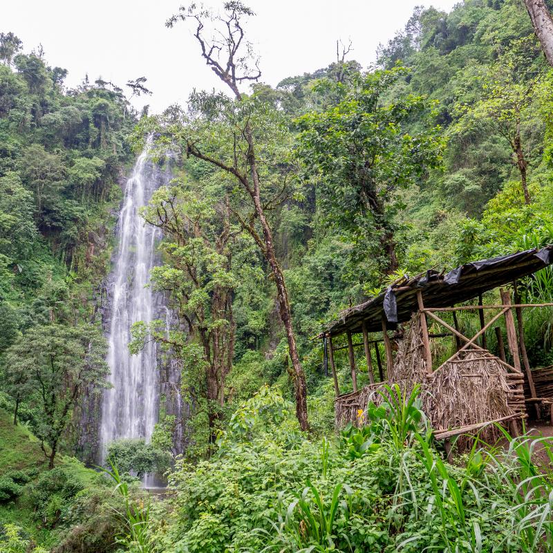 Matureni Waterfalls & Coffee Farm Tour