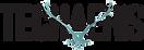 Techaeris-logo (1).png