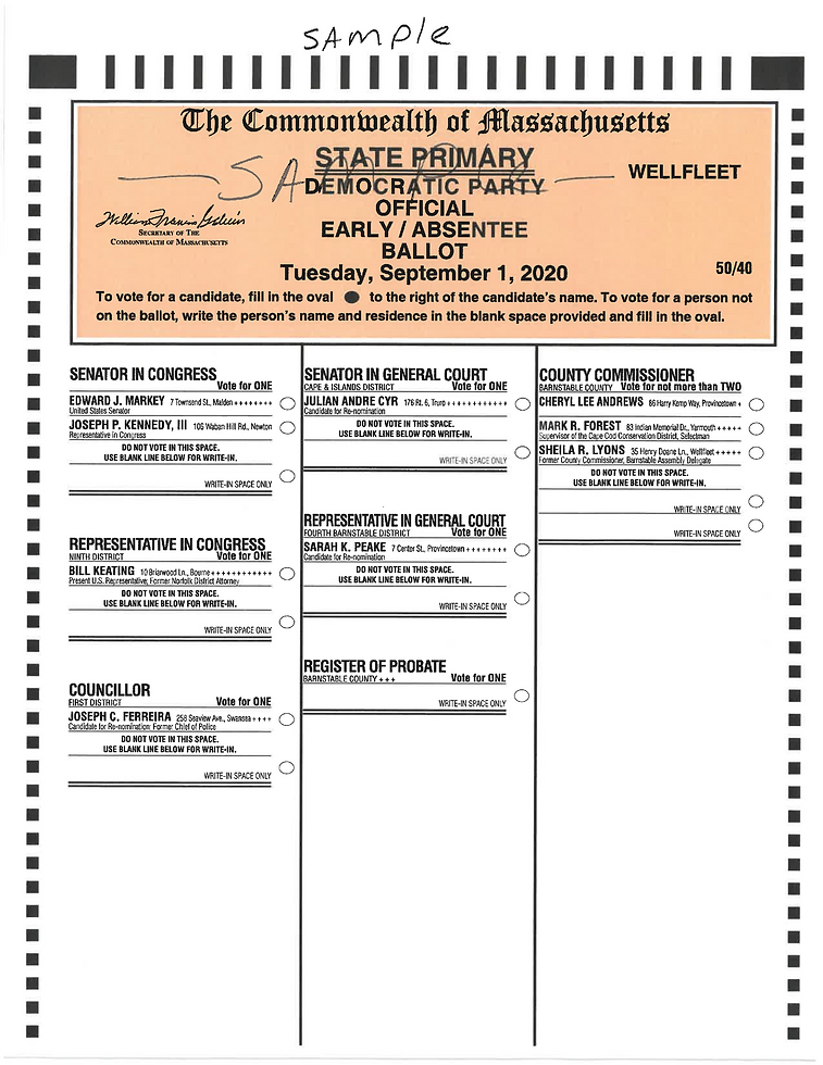 SEPT 1 sample ballot pic.png