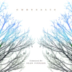 Chrysalis Album Cover.jpg