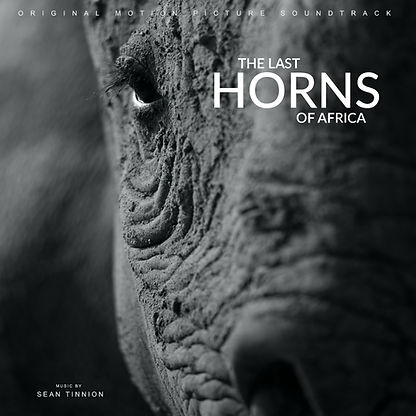 The Last Horns of Africa OST Artwork.jpg