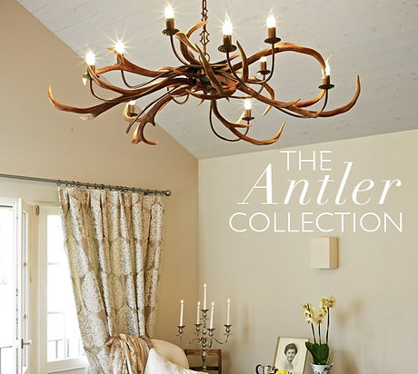 AntlerCollection.jpg