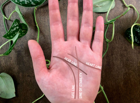 Palmistry: The Four Major Lines