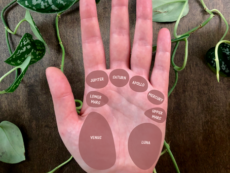 Palmistry: Understanding the Mounts of the Hand