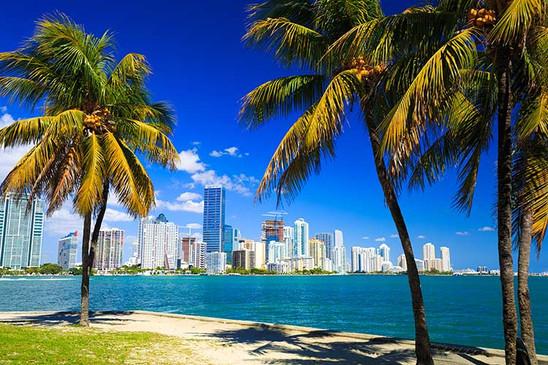 Skyline view of Miami Florida