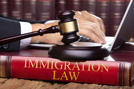 What A Client Should Expect From His Immigration Lawyer