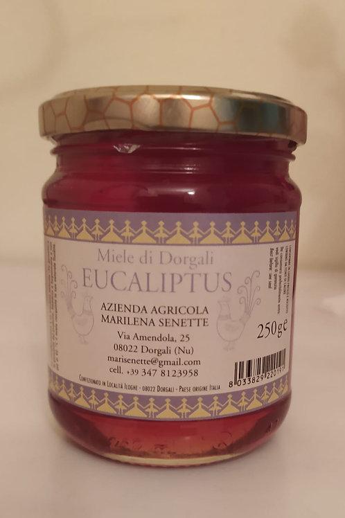 MIELE EUCALIPTUS 250 gr