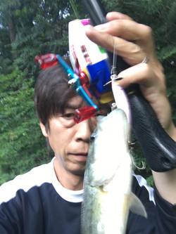 釣れない野池フィッシュ!
