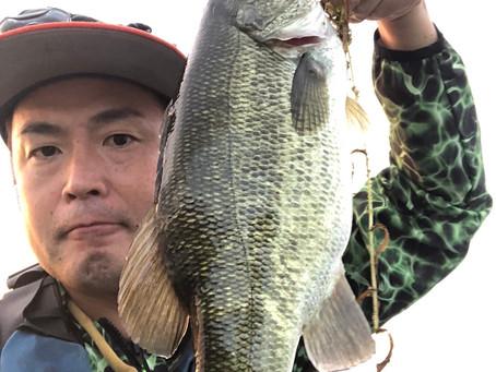 九月の琵琶湖!