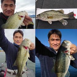 釣り友釣果