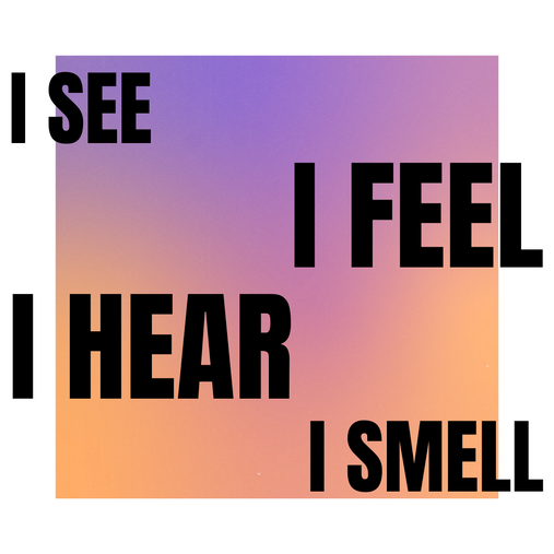 I See Feel Hear Smell
