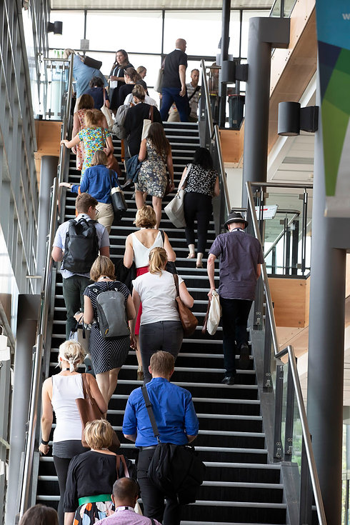 Image of backs of participants in 2019 EPHEA Conference as they walk up stairs.